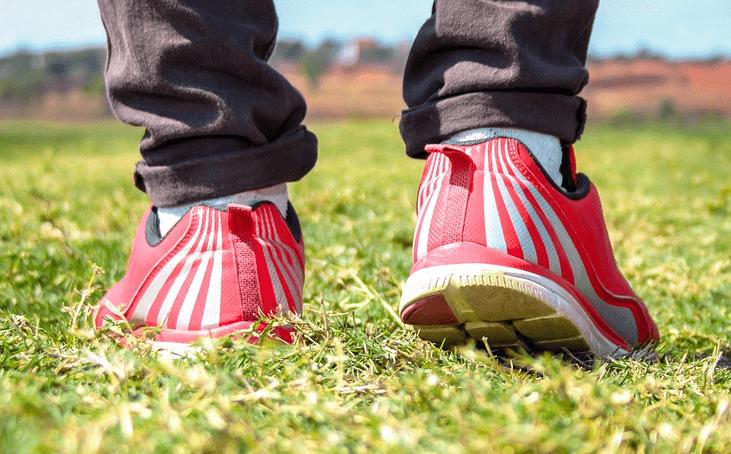 כל מה שצריך לדעת על דורבן ברגל